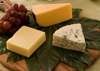 GTB Cheese
